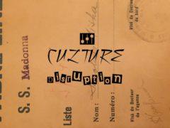 Introducing Culture Disruption